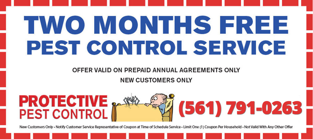 Two Months Free Pest Control