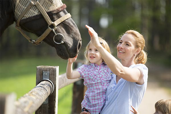 Pest Control in Wellington Florida, a Primarily Equestrian Community