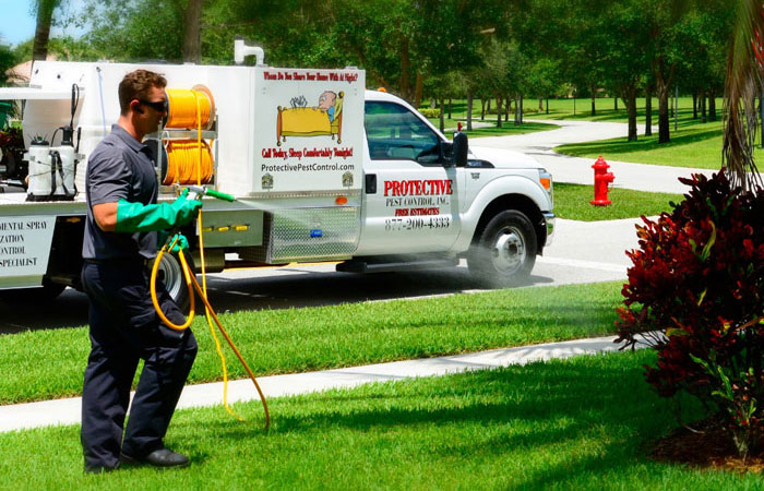 Pest Control, Lawn Spraying